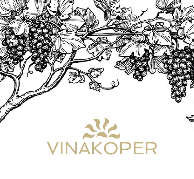 Poster concepts for VinaKoper